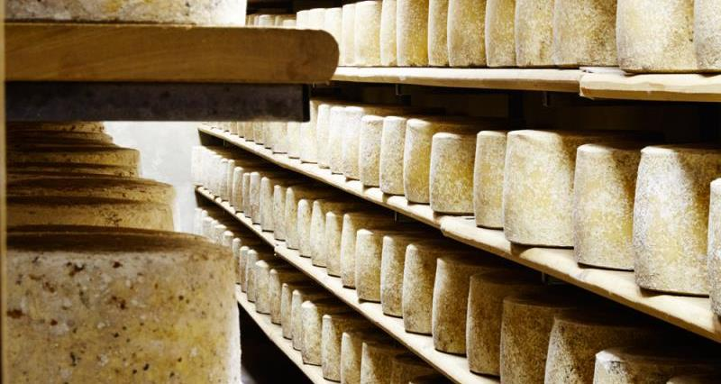 Cheese maturing in storage